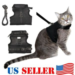Cat Harness Vest w/ Leash Double Strap Blue